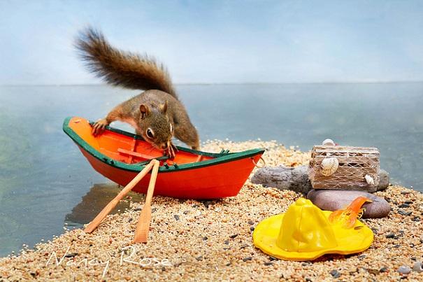 cute-squirrel-nancy-rose-1