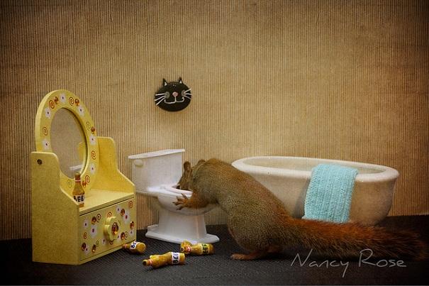 cute-squirrel-nancy-rose-13
