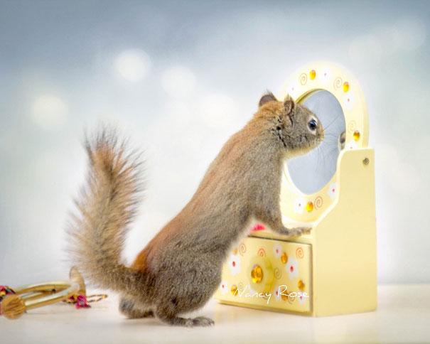 cute-squirrel-nancy-rose-8