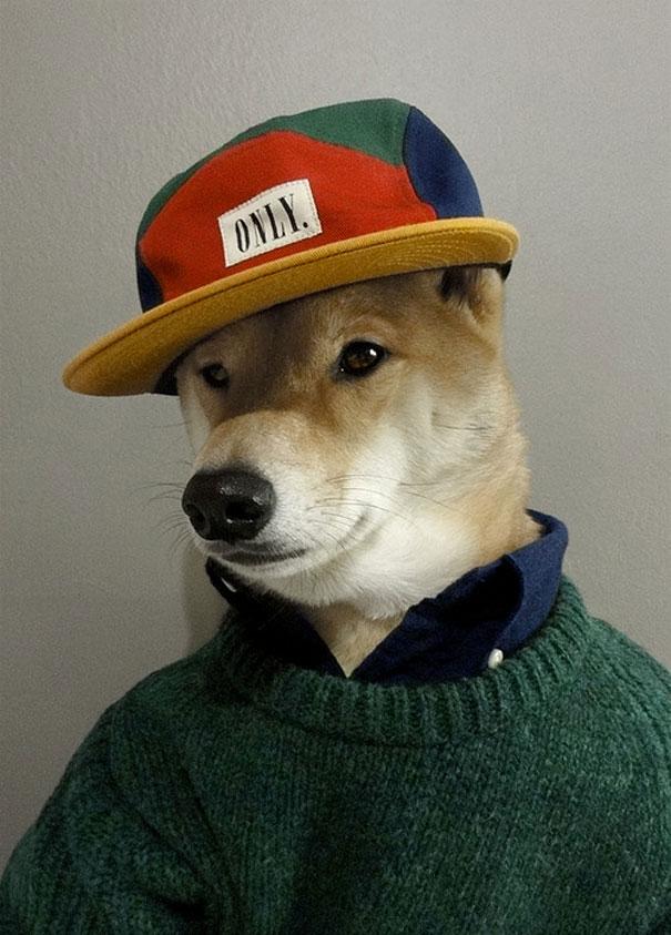 menswear-dog-dave-fung-yena-kim-5