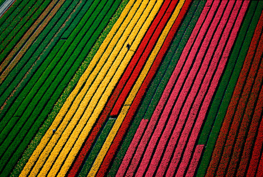 from-above-collection-yann-arthus-bertrand-10