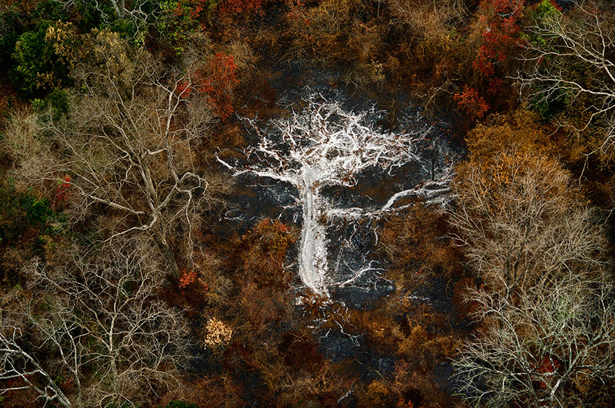 from-above-collection-yann-arthus-bertrand-22