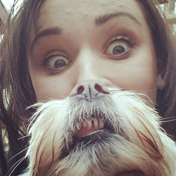 dog-beards-1