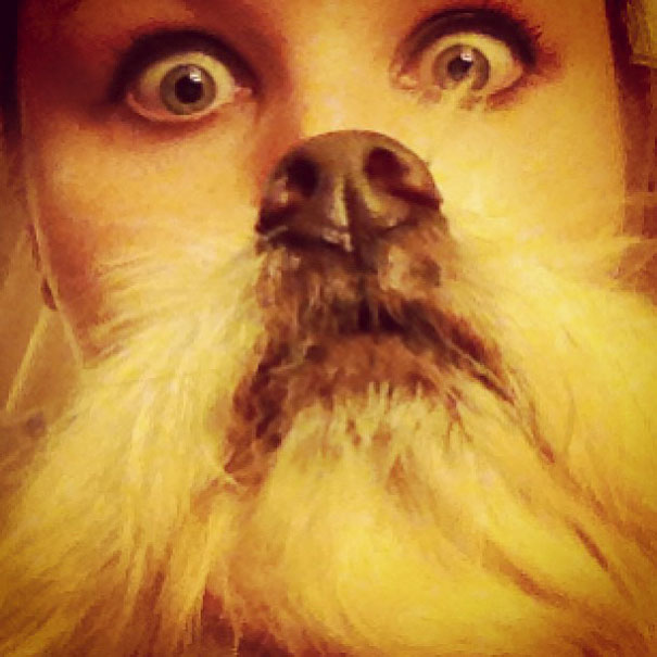 dog-beards-10