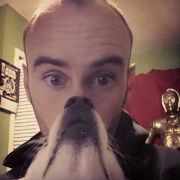 dog-beards-11
