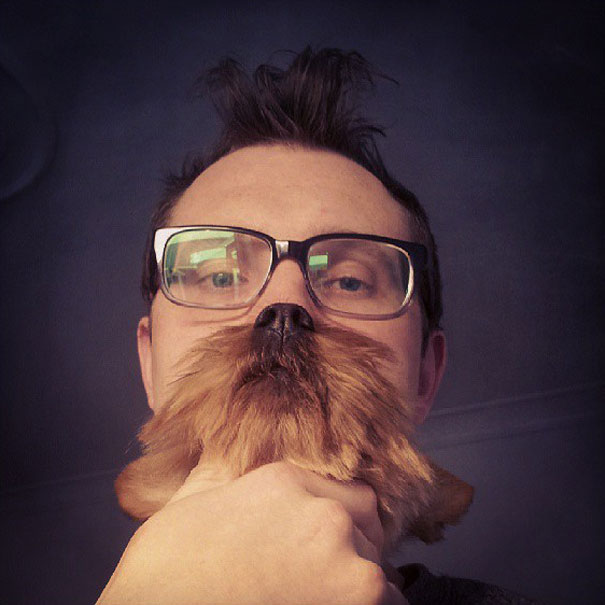 dog-beards-2