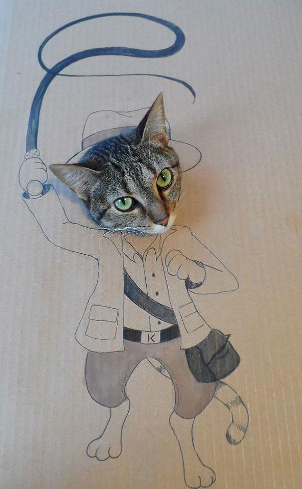 funny-cardboard-cat-costumes-5