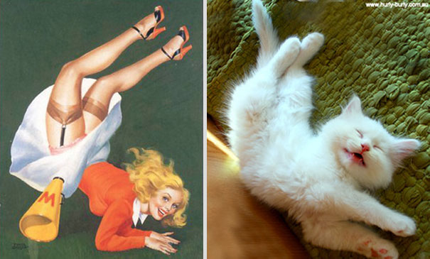 Cats That Pose Like Pin Up Girls (18 pics)