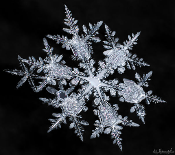 Stunning Super-Detailed Close-Ups of Snowflakes By Don Komarechka