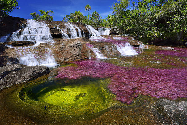 The Most Beautiful River In The World Blooms With Many Colors