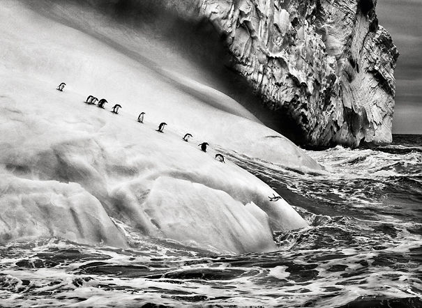 Spectacular Photos By Photojournalist Sebastião Salgado
