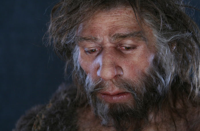 Amazingly Realistic Reconstructions Of Our Ancestors Illustrate Human Evolution
