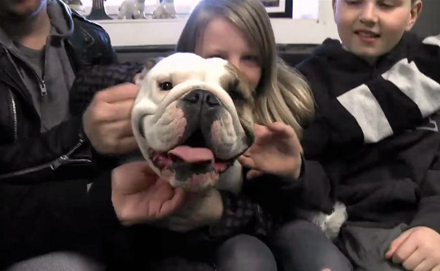 bulldog-love-story-house-2
