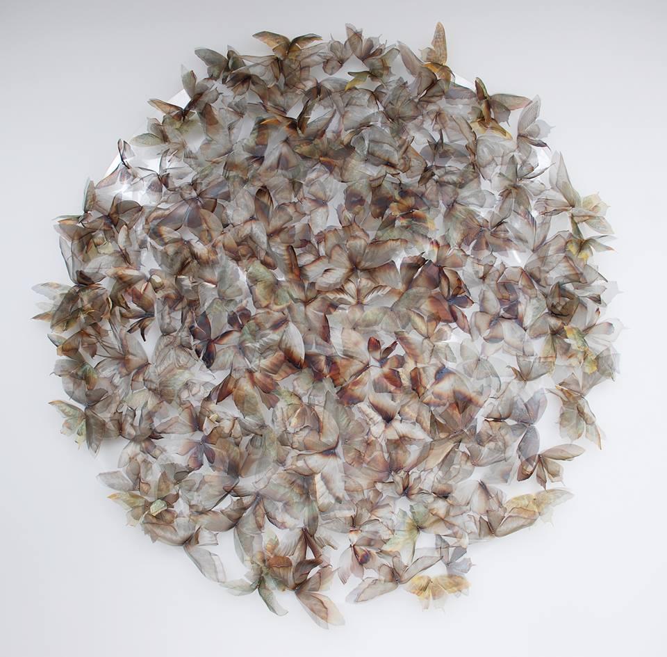 wire-sculptures-nature-studies-michelle-mckinney-13