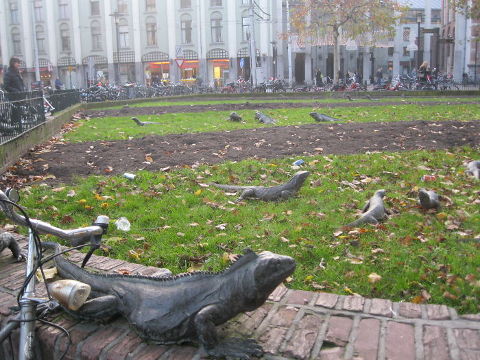 Iguana Park – Amsterdam