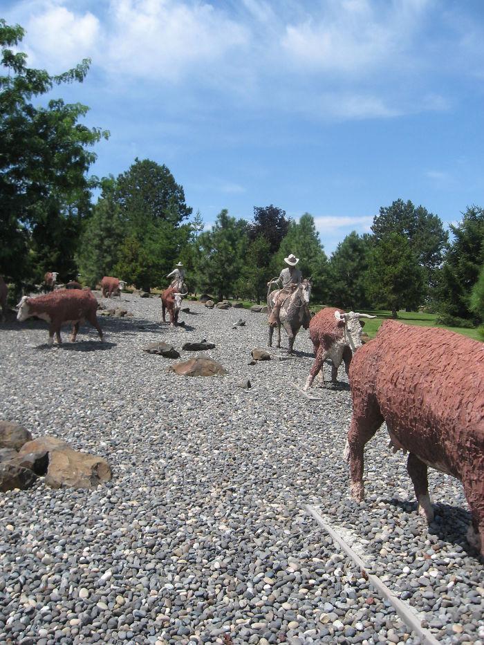 Cattle Drive - Pendleton, Oreong