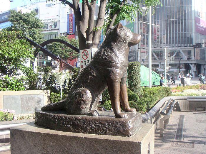 Hachiko, The Most Loyal Dog In The World. (shibuya Station, Tokyo, Japan)