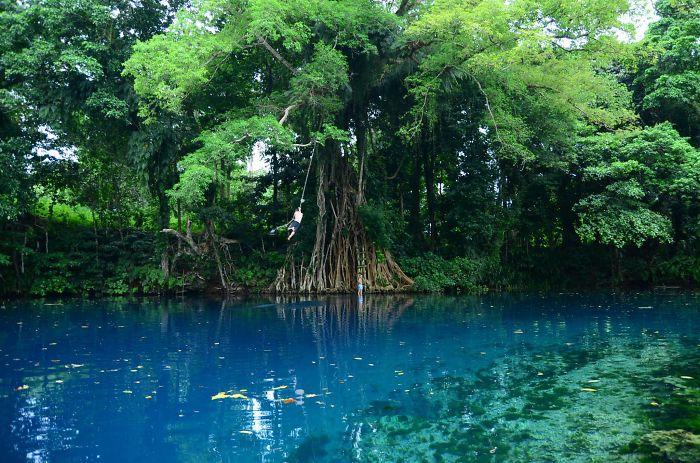 Vanuatu, Matevulu Blue Hole, Espiritu Santo Island (It's Me On The Rope Swing)