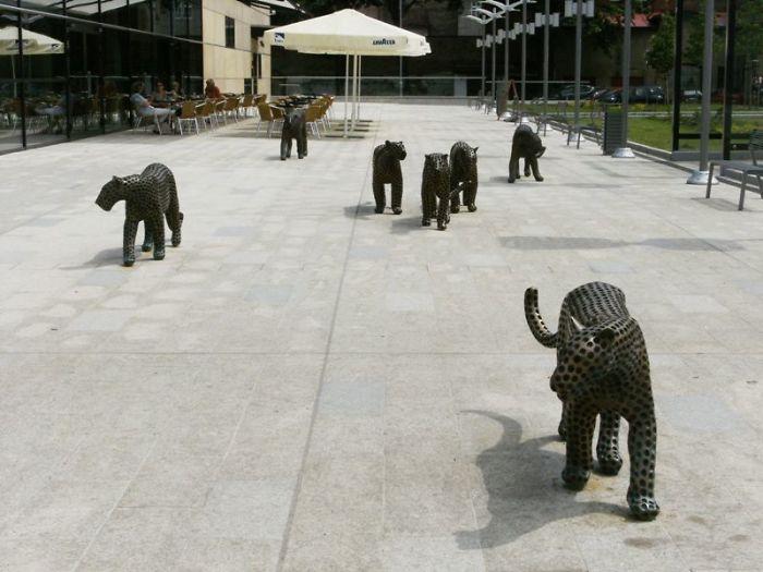 """little Cats"" In Trutnov, Czech Republic"