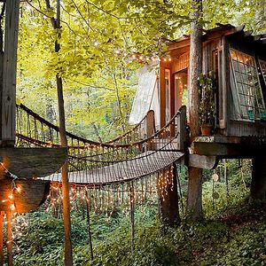 A Treehouse For The Mind, Body, And Spirit In Atlanta, USA