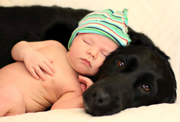 Share Pictures Of Kids And Their Big Dogs