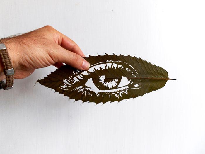 leaf-cutting-omid-asadi-20