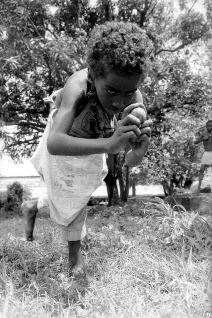 Jum Masta - Guyana