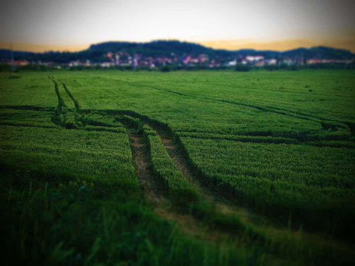 4s Crop Tracks