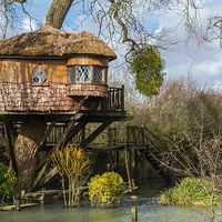 Treehouse In  Amberley, Uk