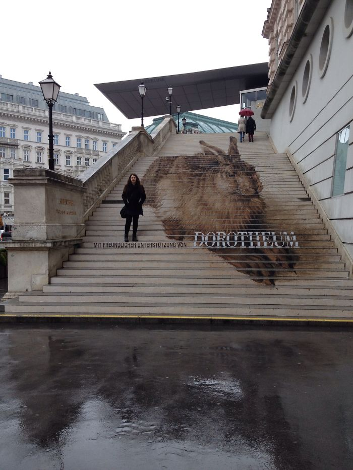 Durer At The Albertina In Vienna