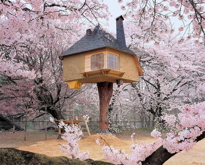 Teahouse Tetsu Treehouse In Hokuto City, Japan.