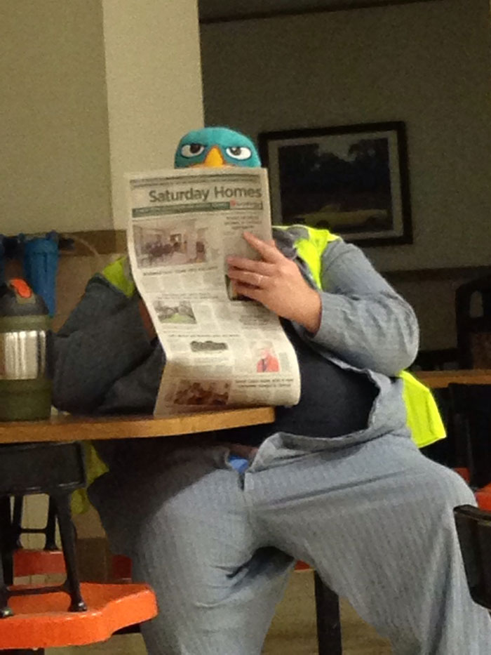 Angry Bird Is Reading A Newspaper