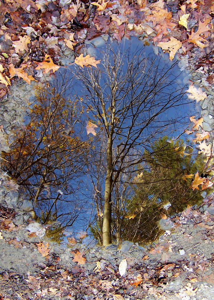 Azure Reflection