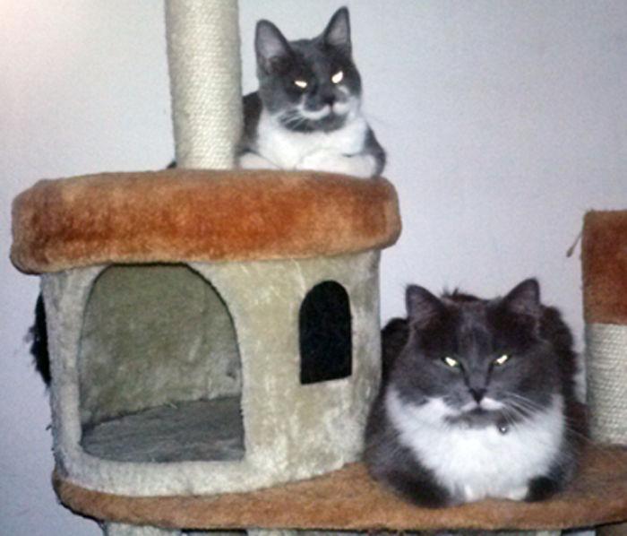 My Paisley And Dori.