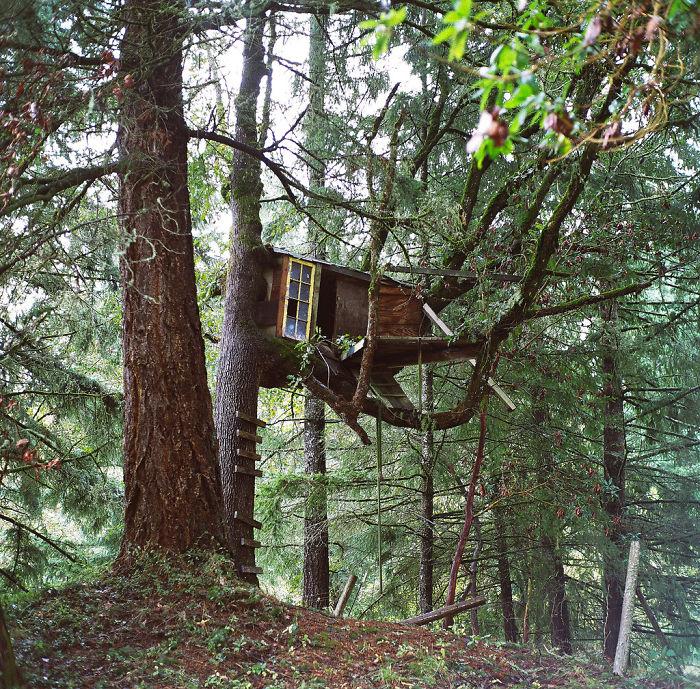 Kyle's Treehouse