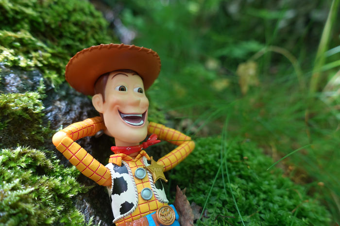 Woody In The Wood