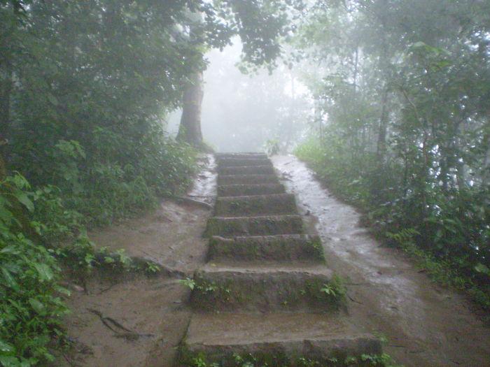 Stairs Leading To Soojipara Falls, Near Waynad, Kerala, India.