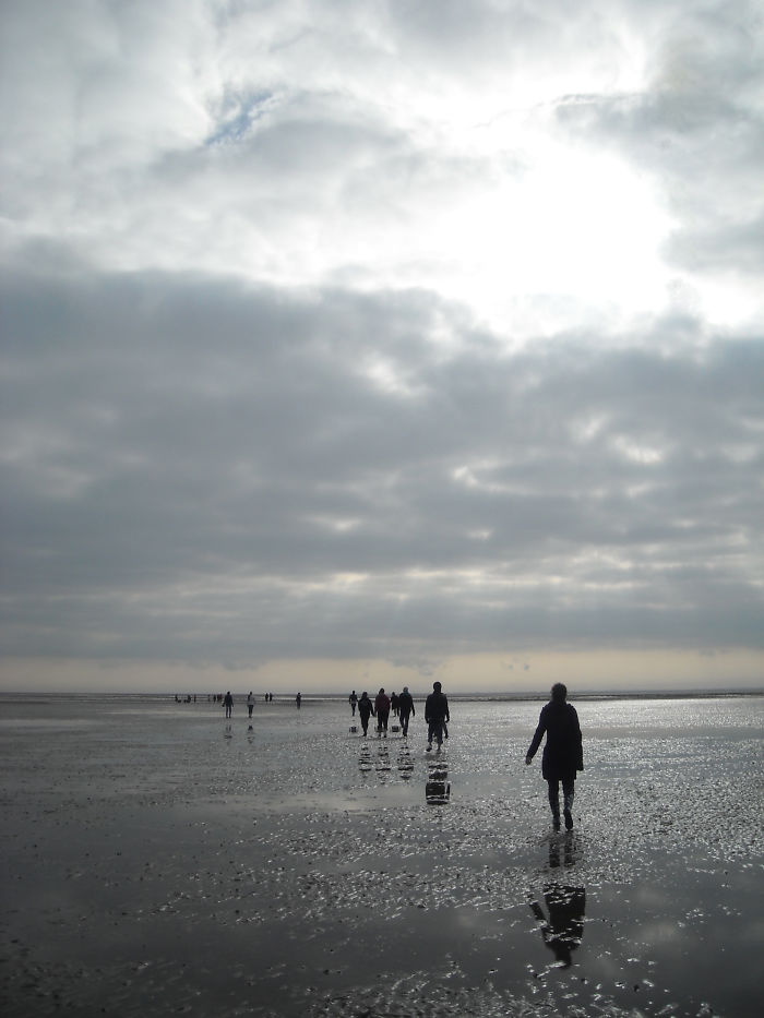 Getting Muddy In Ameland, The Netherlands