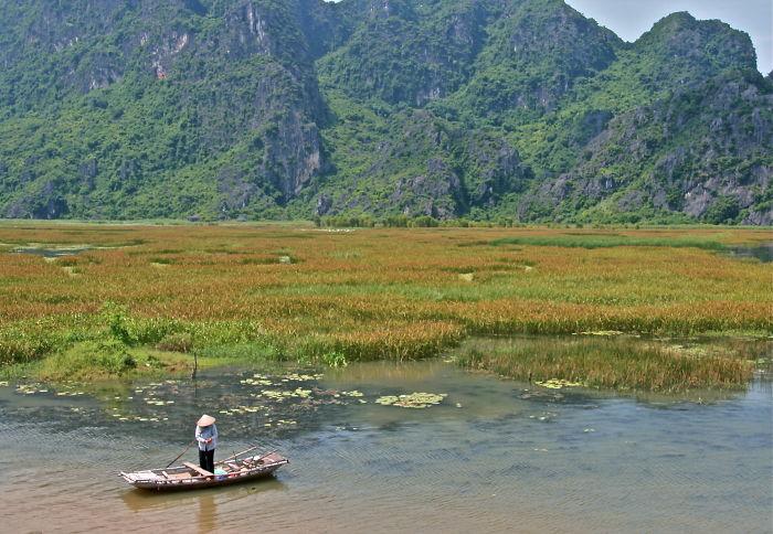 Van Long Wetlands, Vietnam
