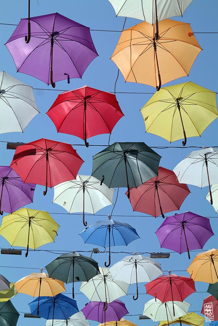 Umbrella Sky 2