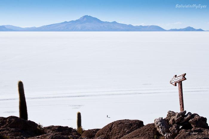 Salar De Uyuni/ Bolivia