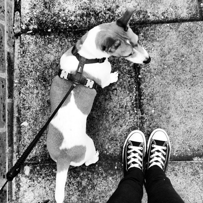 For A Walk .....