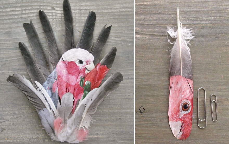 oil-acrylic-paintings-parrot-feathers-jamie-homeister-26