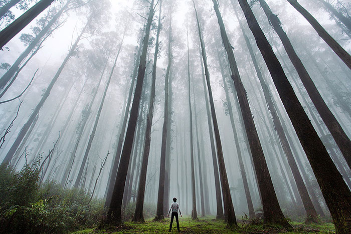 Post Pictures Of Tiny Humans Lost In The Majesty Of Nature