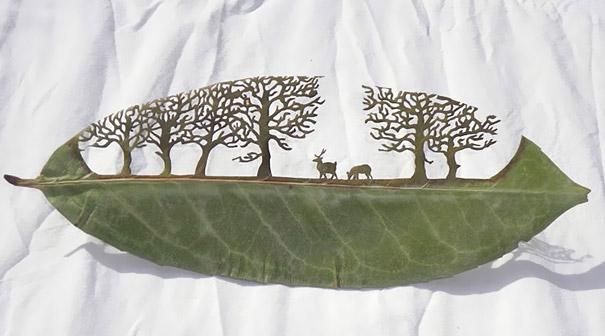 Cut-Away Leaf Art: Deer in the Forest