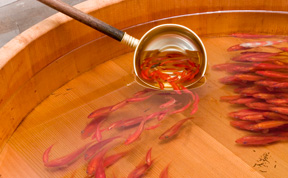 Breathtaking 3D Goldfish Paintings by R. Fukahori