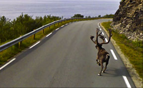 36 Strange and Funny Google Street View Photos
