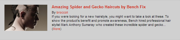 Amazing Spider and Gecko Haircuts by Bench Fix