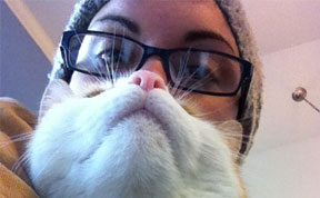 'Cat Beard' Craze Takes Internet By Storm
