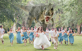 Probably The Best Wedding Photo Ever